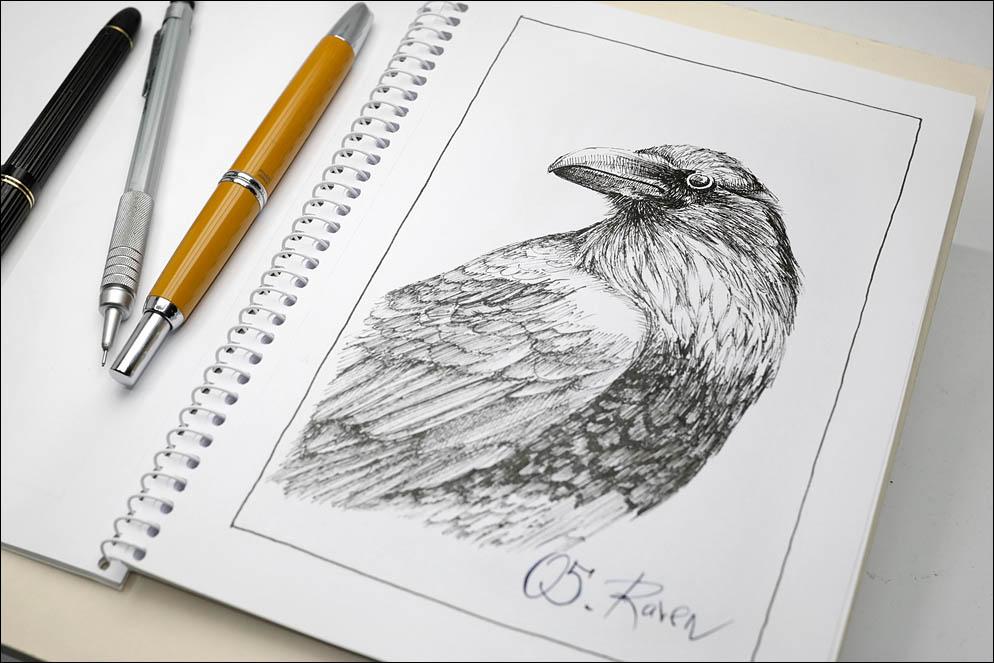 05. Raven. Inktober2021. Lenskiy.org